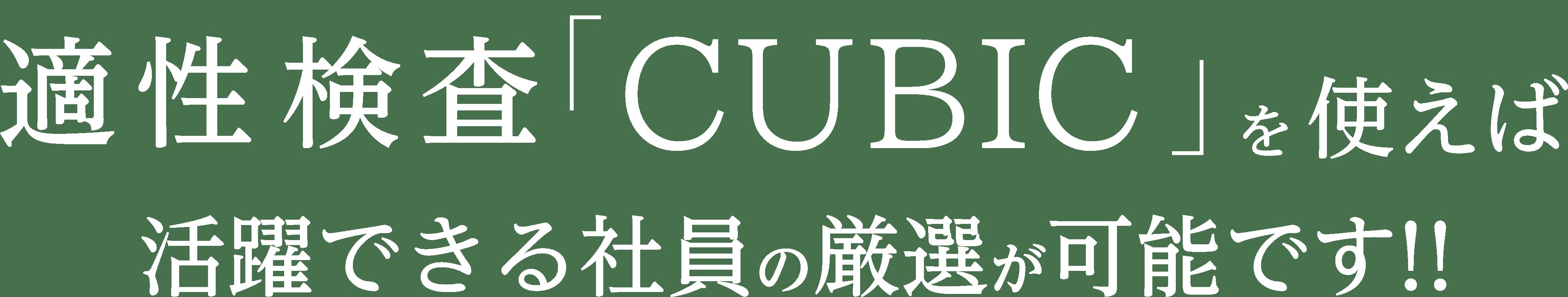 適性検査「CUBIC」を使えば活躍できる社員の厳選が可能です!!